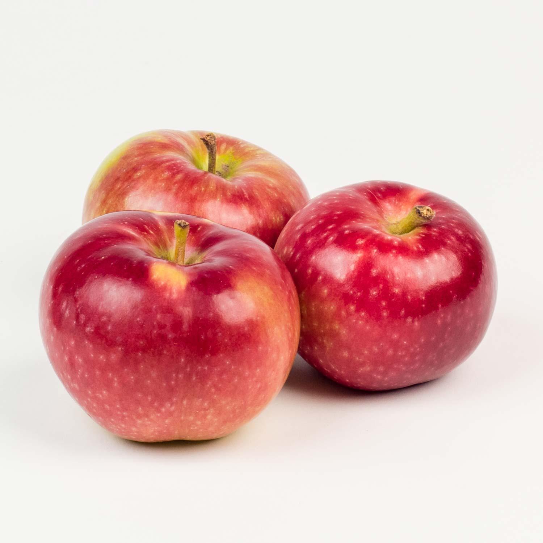 Prix Caisse A Pomme pomme cortland du québec 36 lb